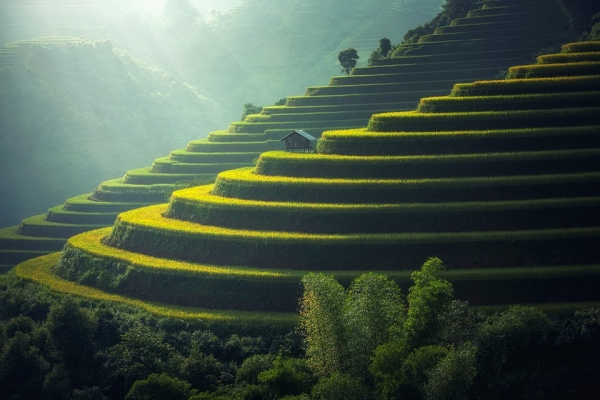TOUR DEL VIETNAM